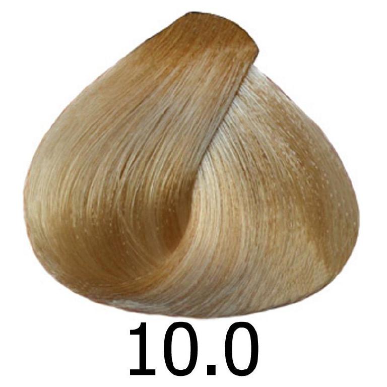 sinergy 10.0