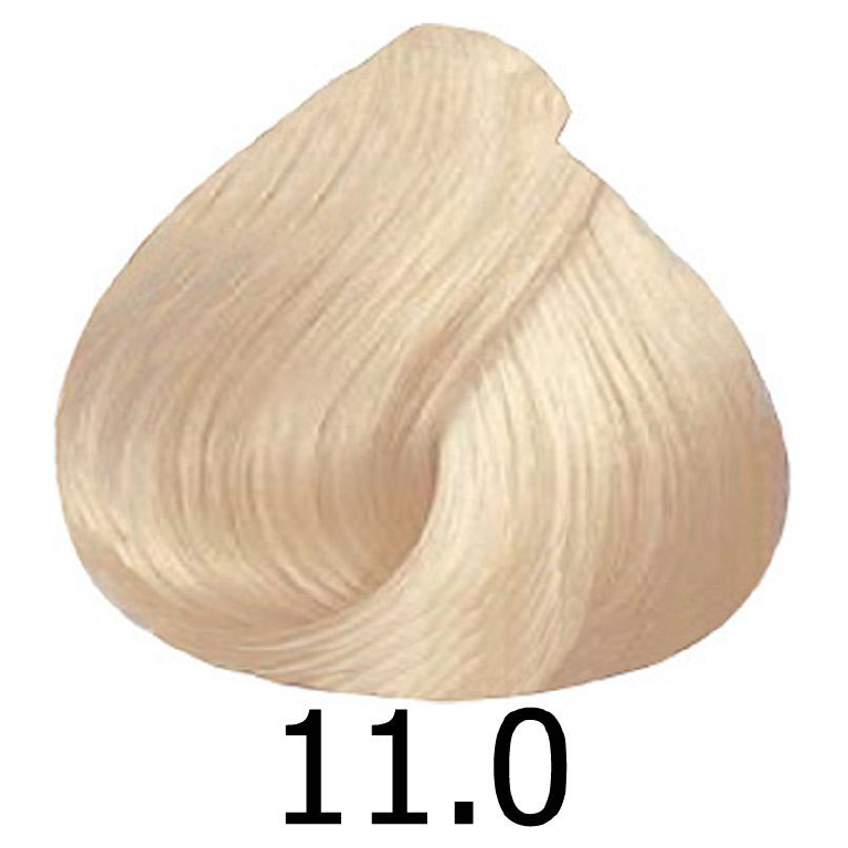 sinergy 11.0