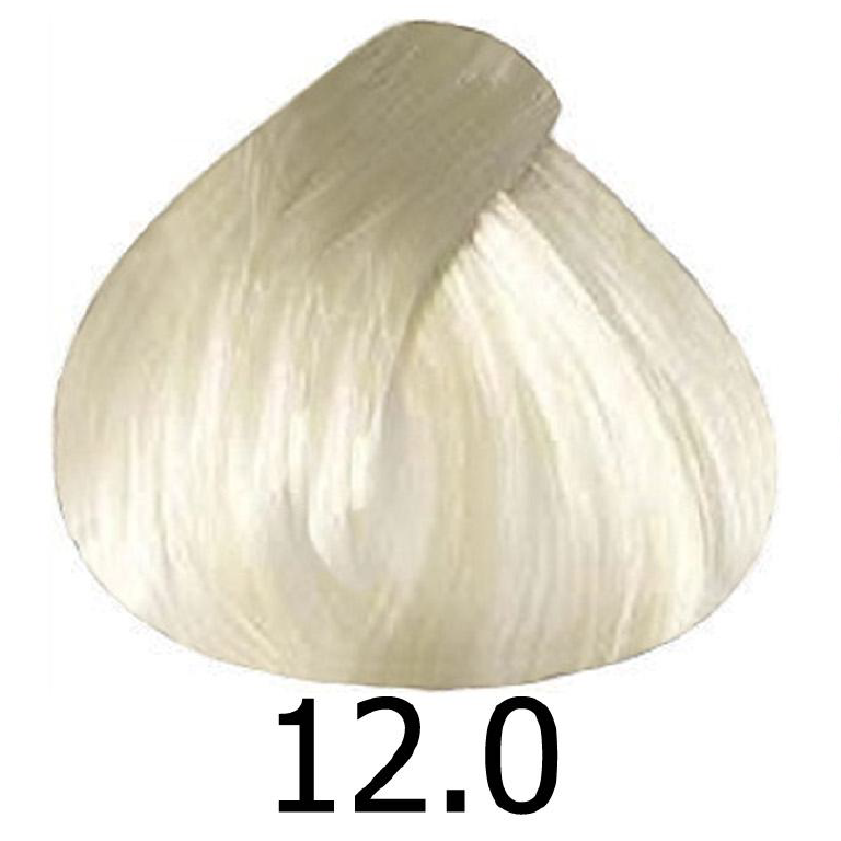 sinergy 12.0