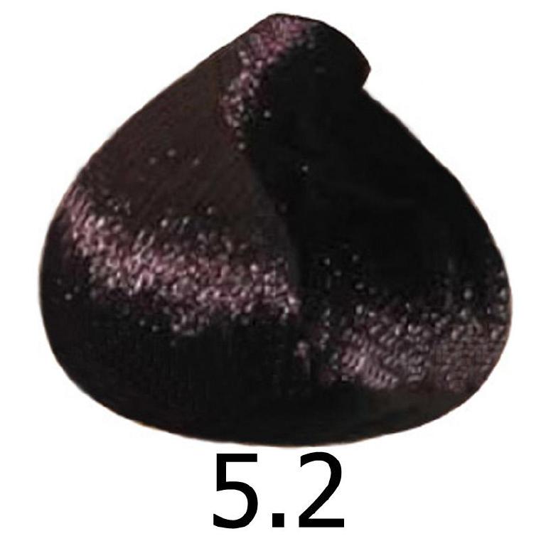 sinergy5.2