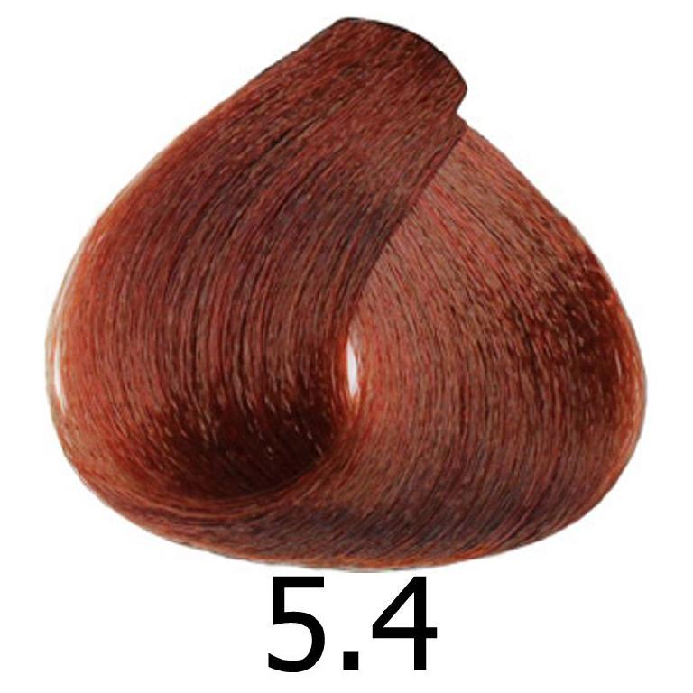 sinergy 5.4